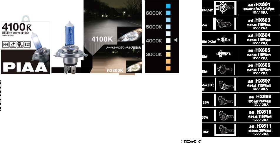 HX601