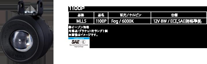 1100P_2
